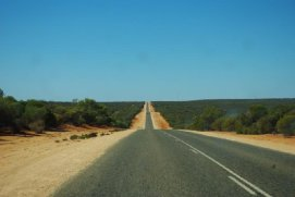 252465-and-another-long-straight-bit-of-road-kalbarri-australia